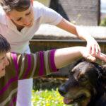 Zooterapia. Czy kontakt ze zwierzętami leczy?